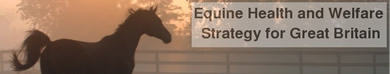Equine Health and Welfare Strategy UK